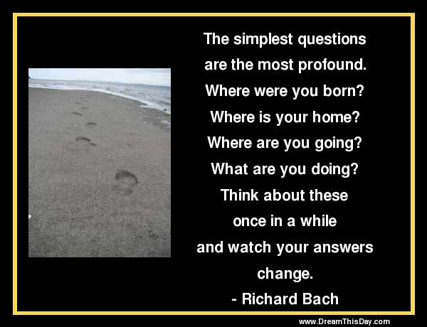Funny Questions Quotes Funny Quotes About Questions