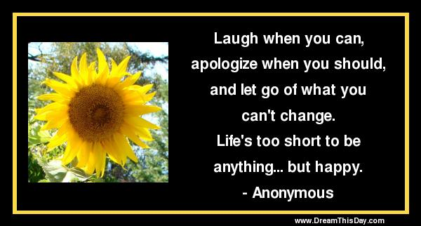 Funny Short Quotes Funny Quotes About Short