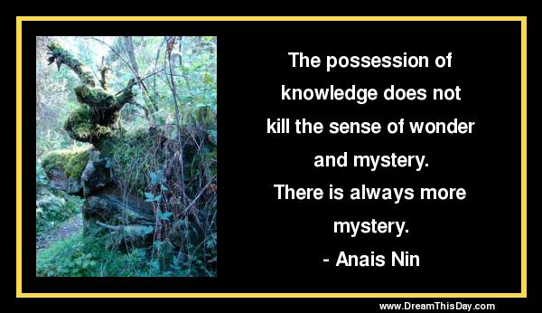 Funny Quotes About Mystery